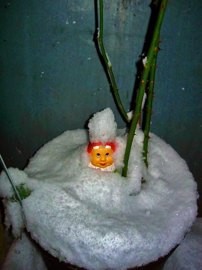 Zwerg_im_Schnee